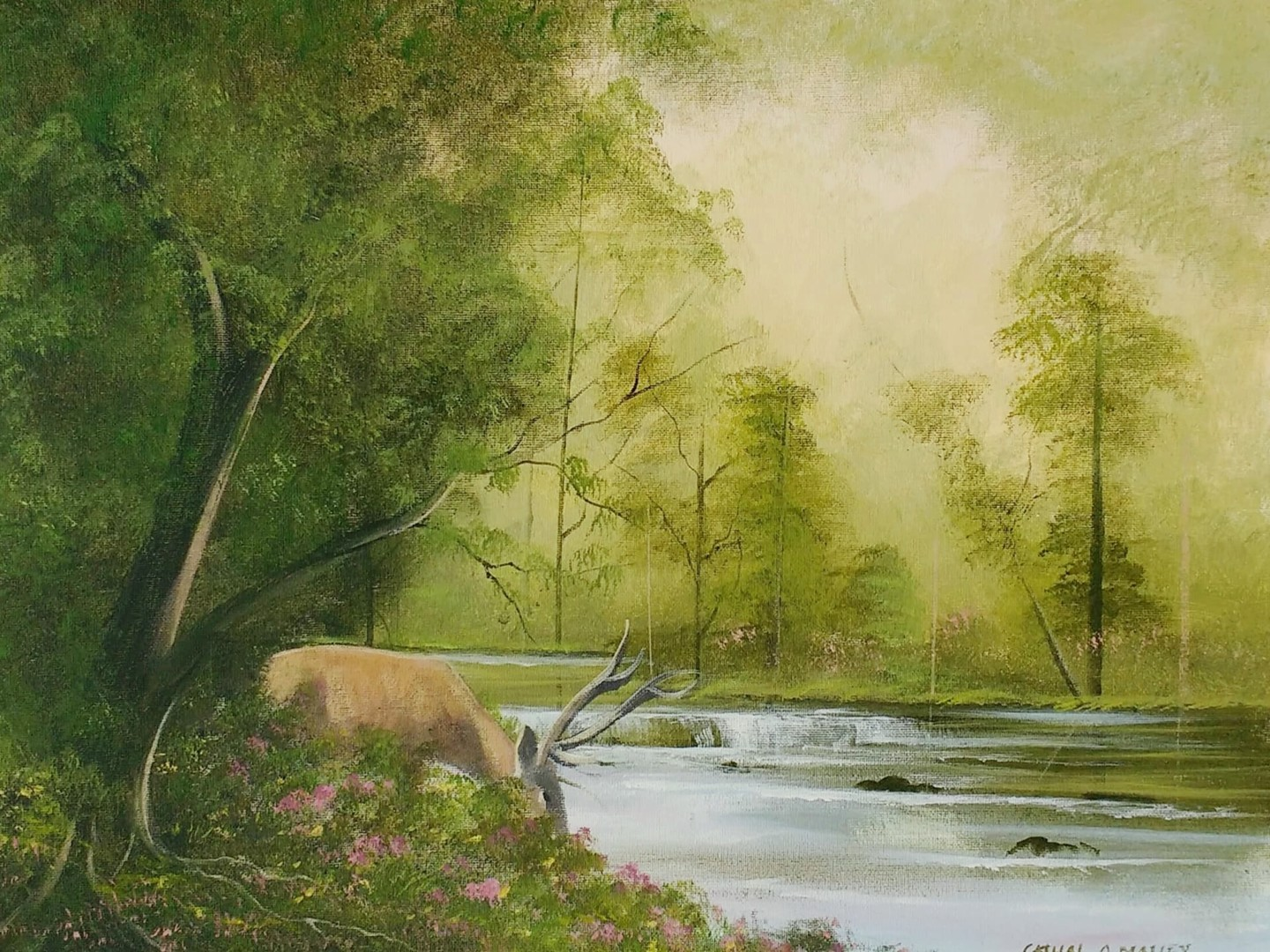 Cathal O Malley - Stag by the river