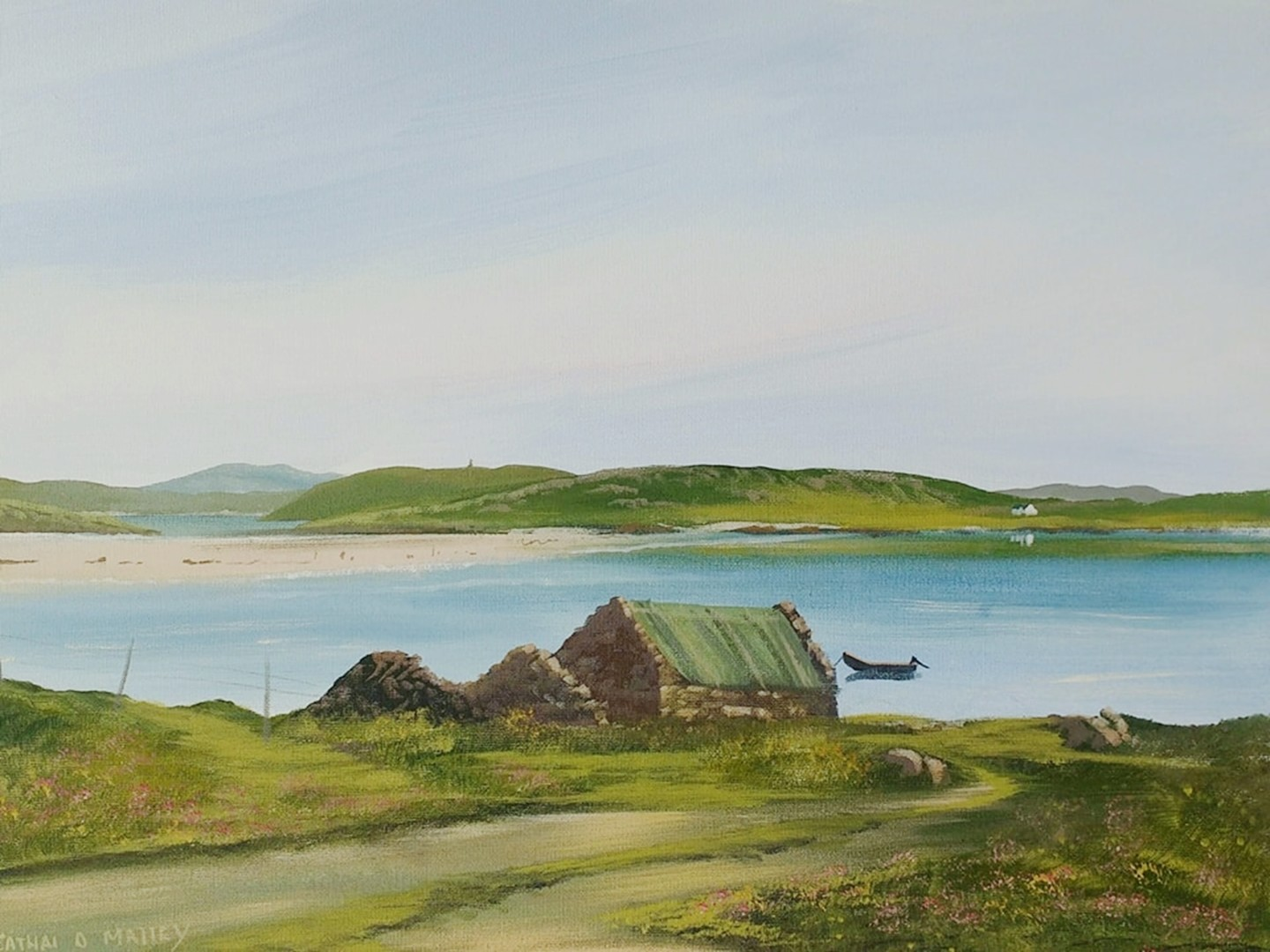 Cathal O Malley - omey view