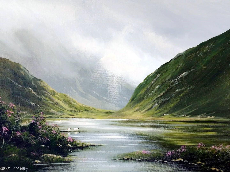 Cathal O Malley - connemara july light