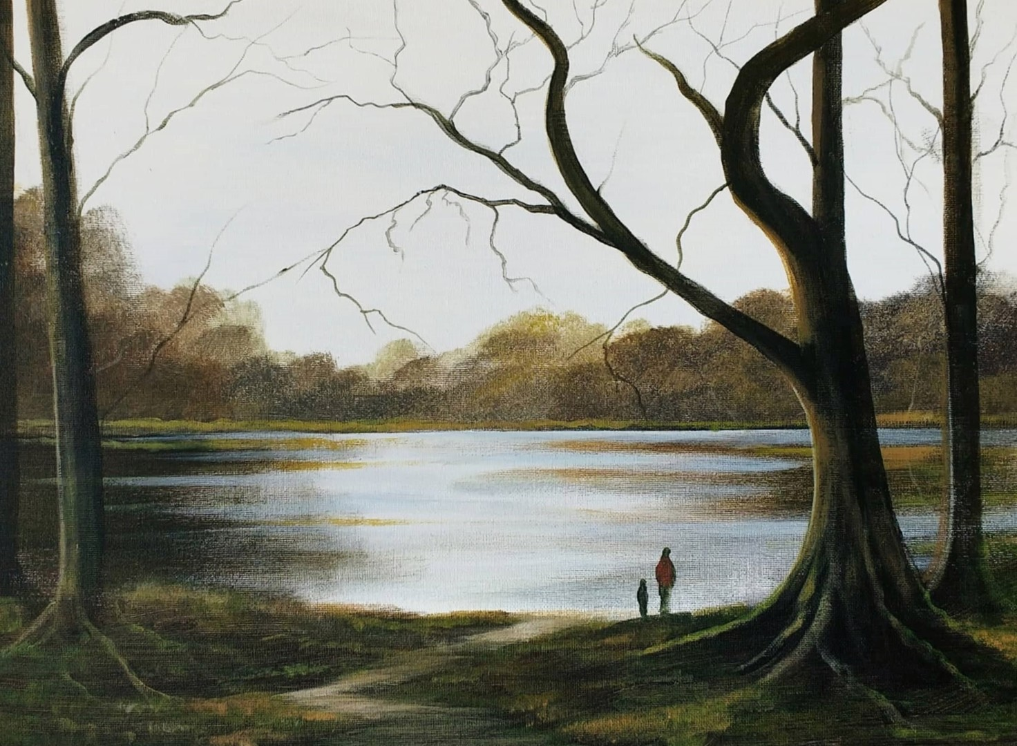 Cathal O Malley - forest walk