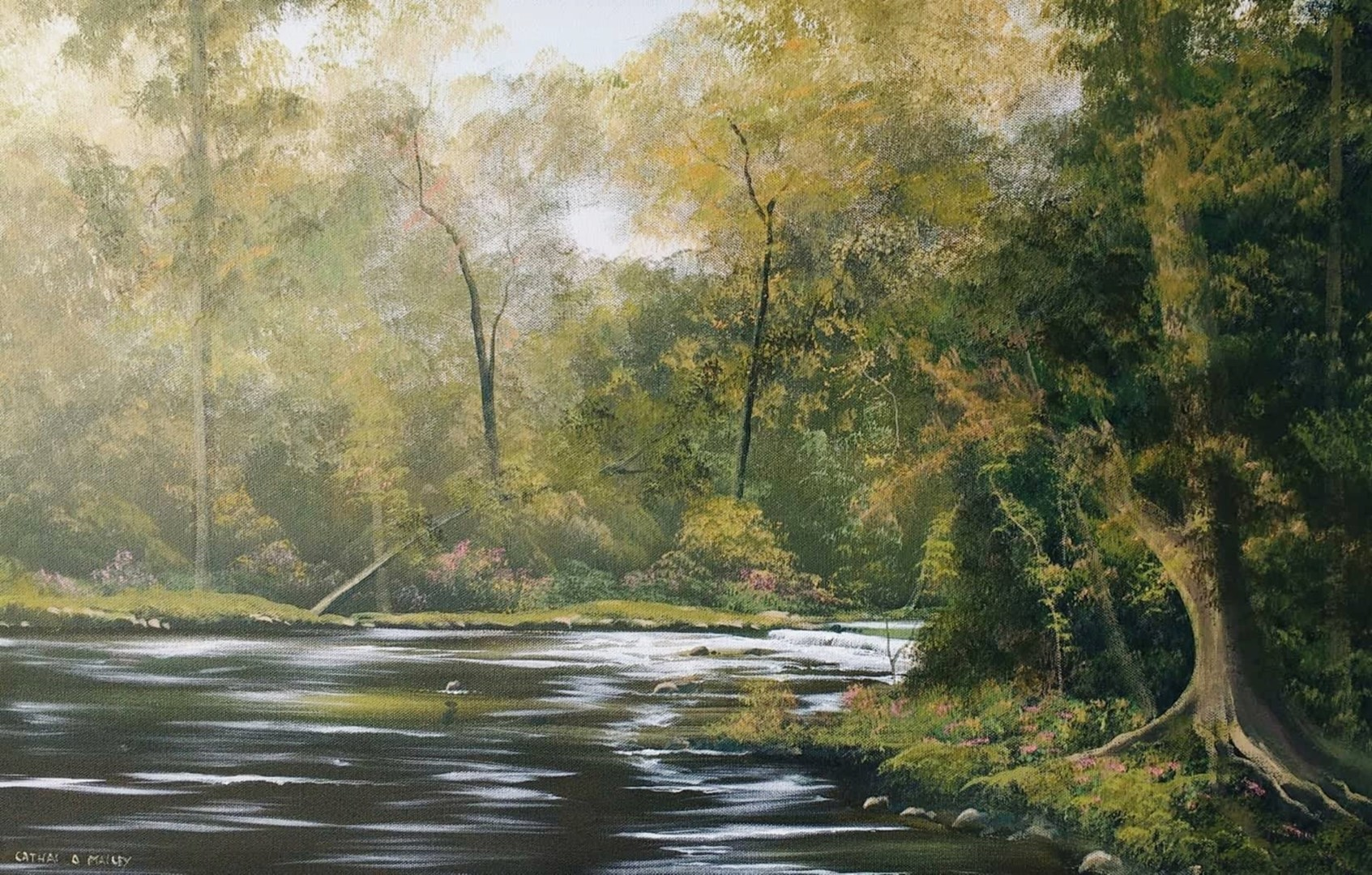 Cathal O Malley - autumn river