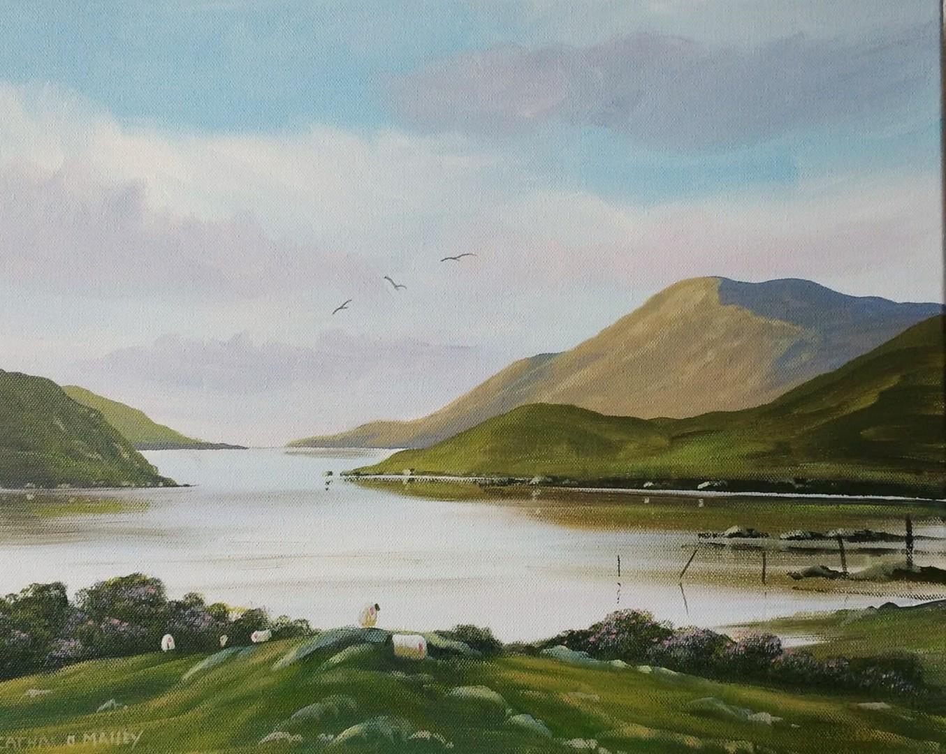 Cathal O Malley - leenane sheep,,