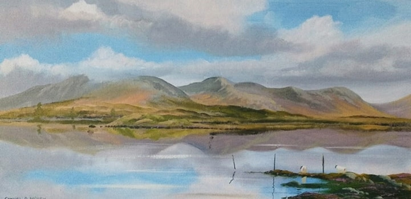 Cathal O Malley - inagh valley reflections