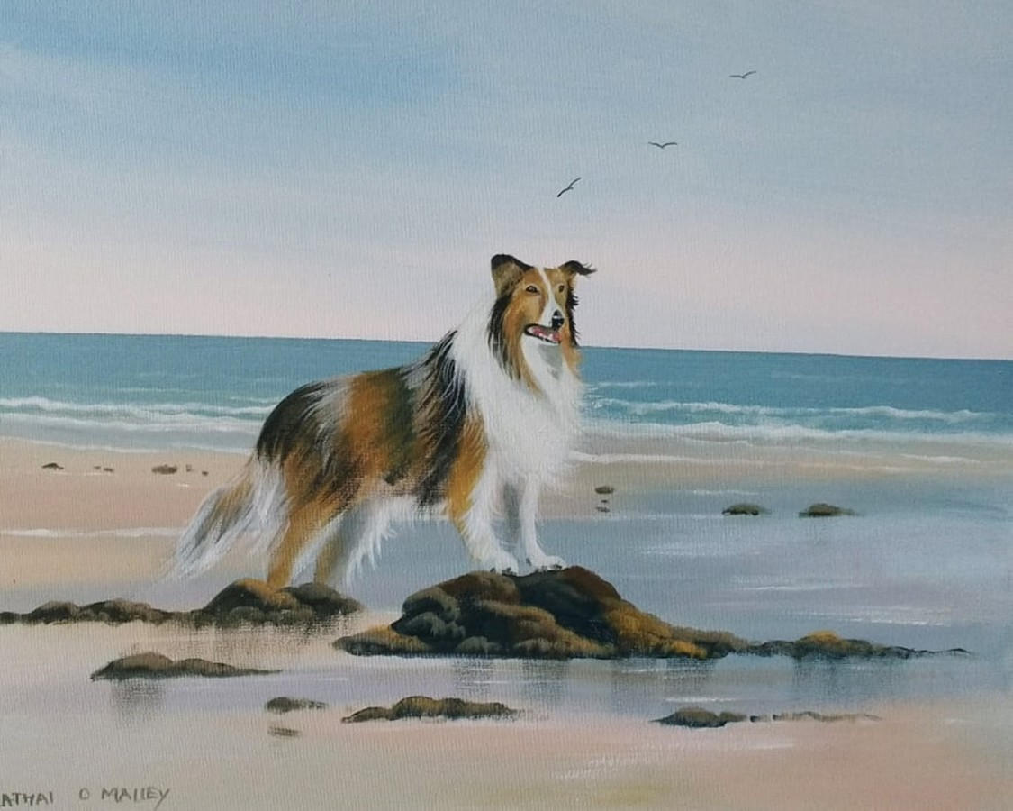 Cathal O Malley - lassie-beach-days.jpg