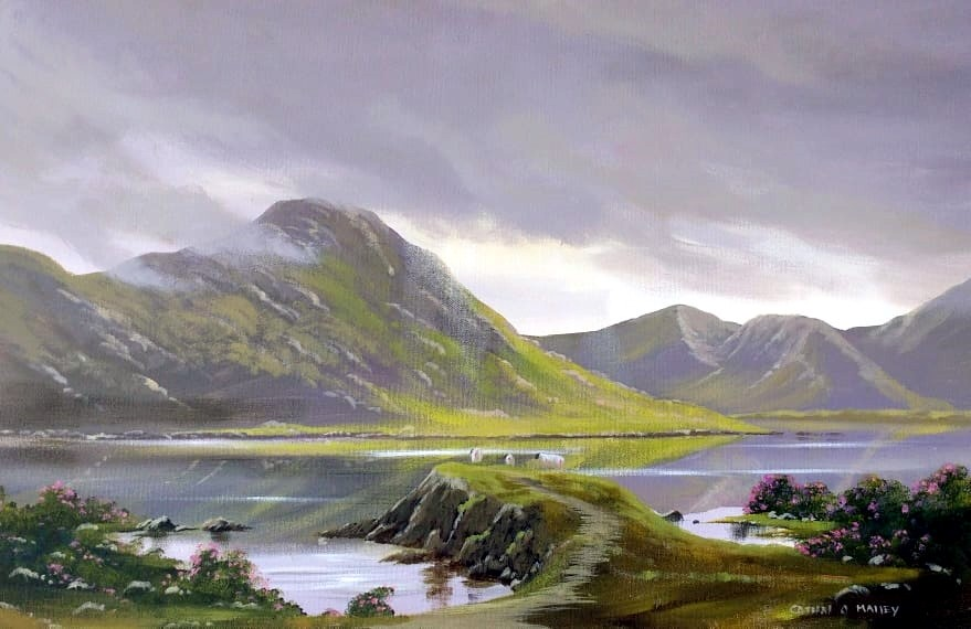 Cathal O Malley - cattle in kylemore