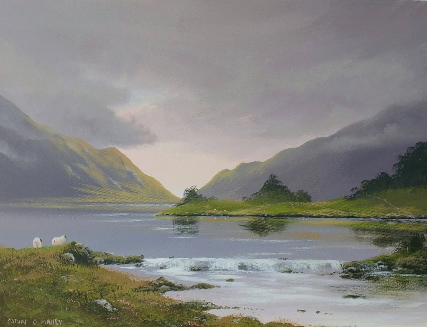 Cathal O Malley - maam-light