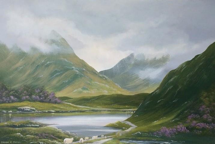 Cathal O Malley - connemara-sheep-maam