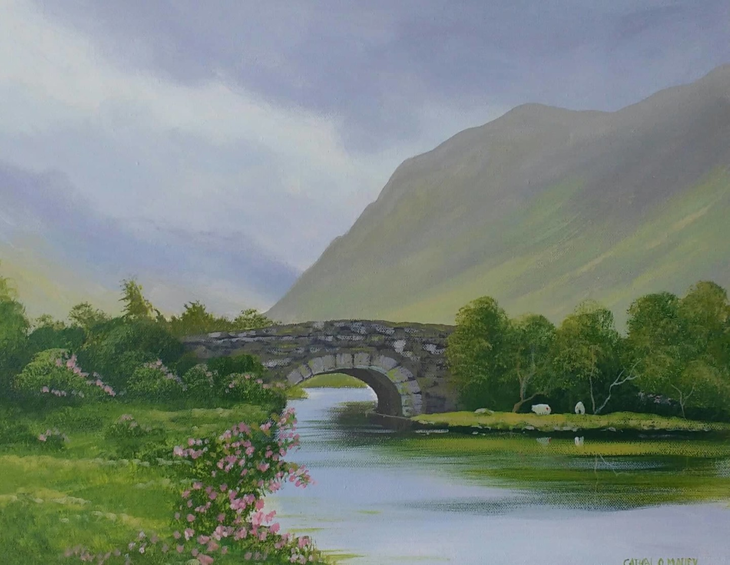 Cathal O Malley - delphi scene co mayo