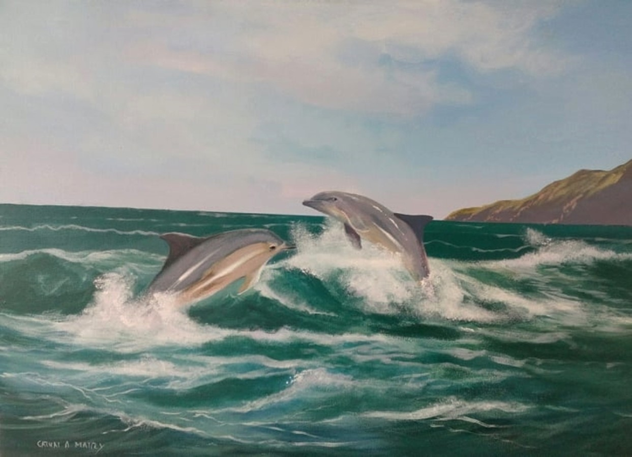 Cathal O Malley - The dolphins in dingle