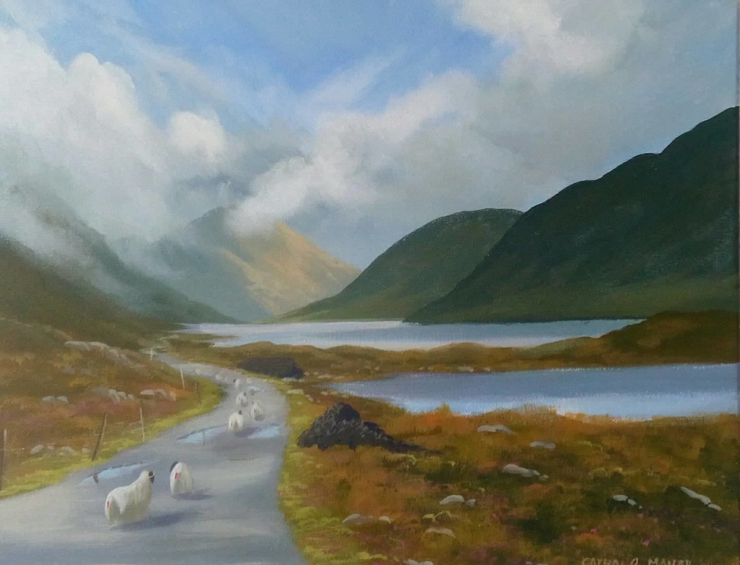 Cathal O Malley - doolough valley 2020