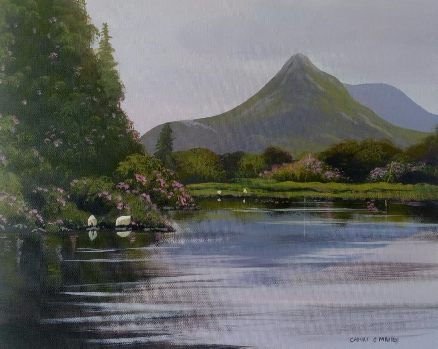 Cathal O Malley - ballinahinch river.