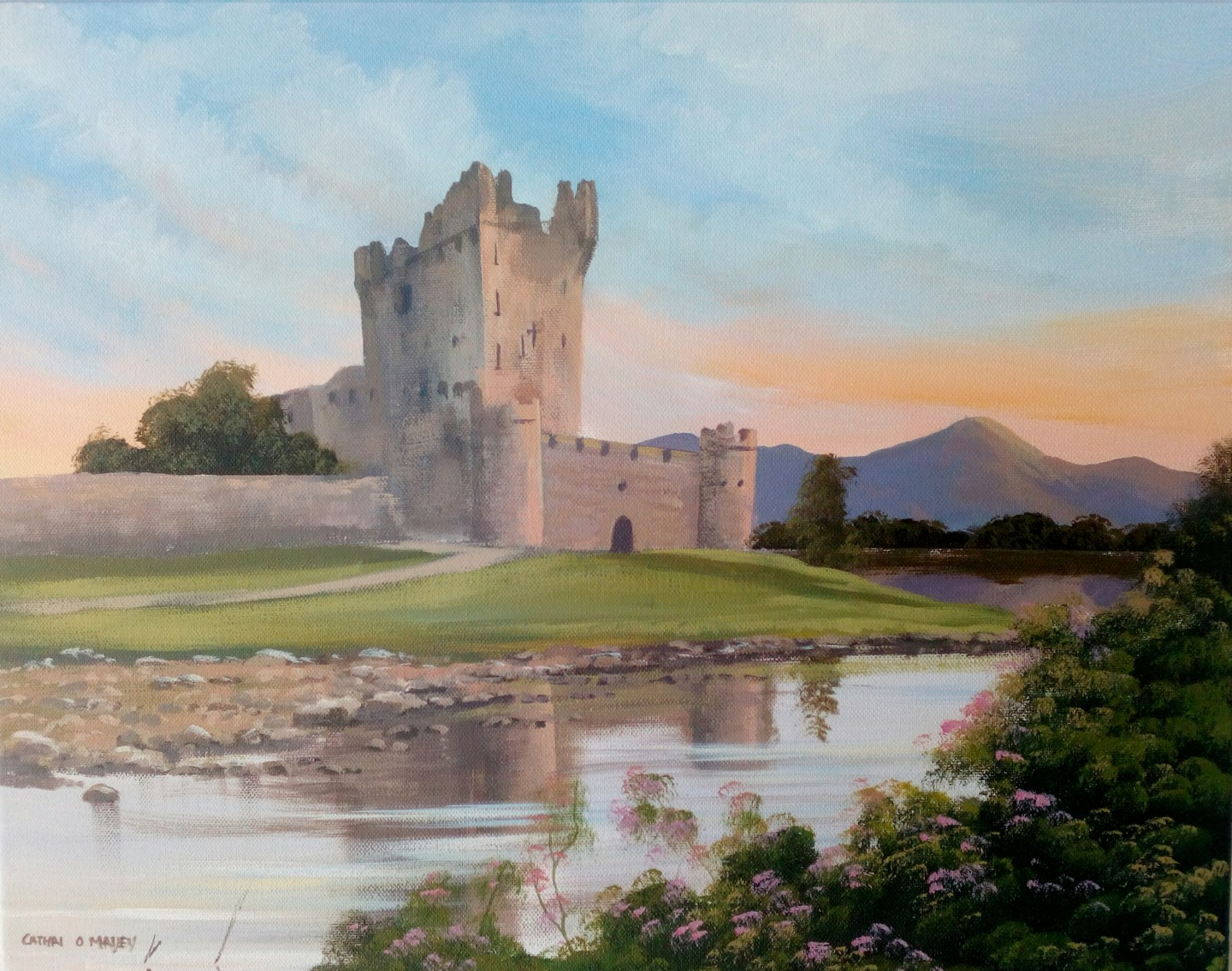 Cathal O Malley - Ross castle,killarney
