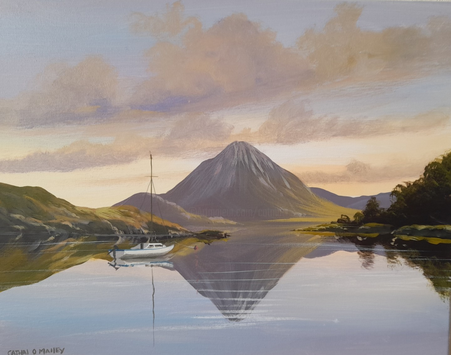 Cathal O Malley - Errigal shade