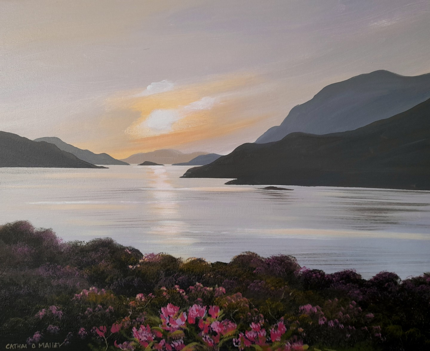 Cathal O Malley - Leenane flowers