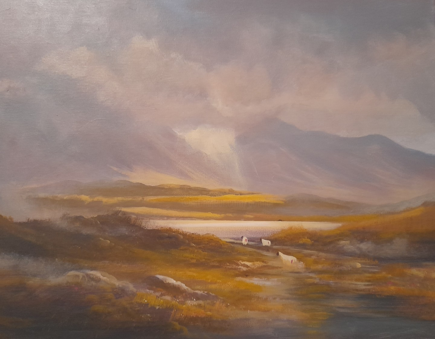 Cathal O Malley - Connemara  light December