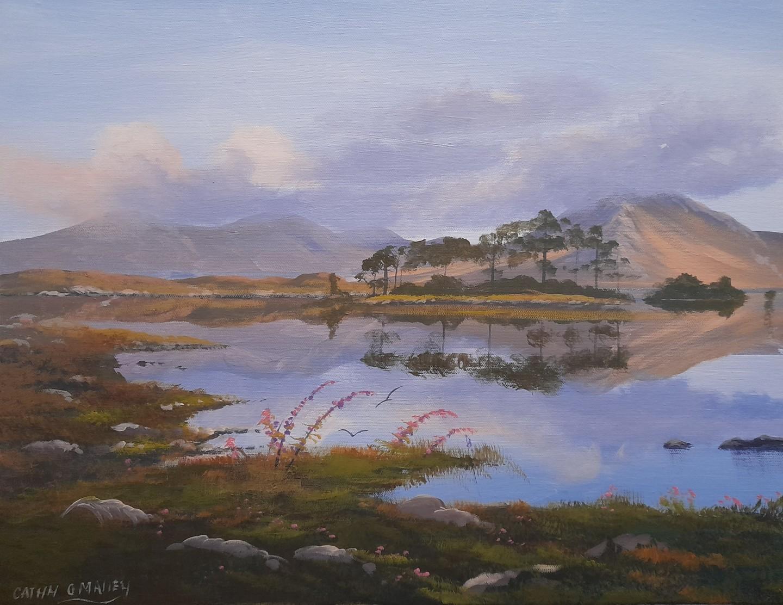 Cathal O Malley - Pine island, recess