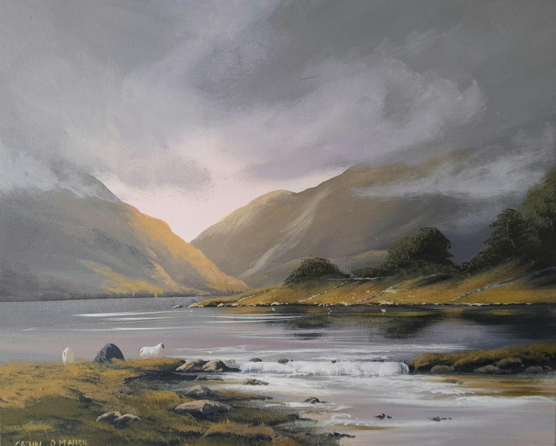 Cathal O Malley - Maam sheep spring