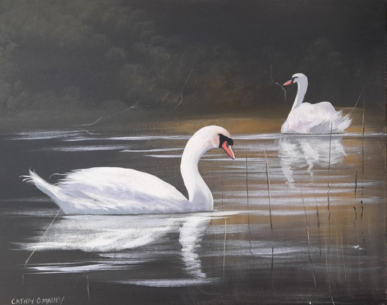 Cathal O Malley - Ballynahinch swans march