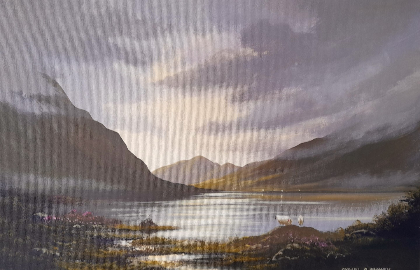 Cathal O Malley - Summer  in maam