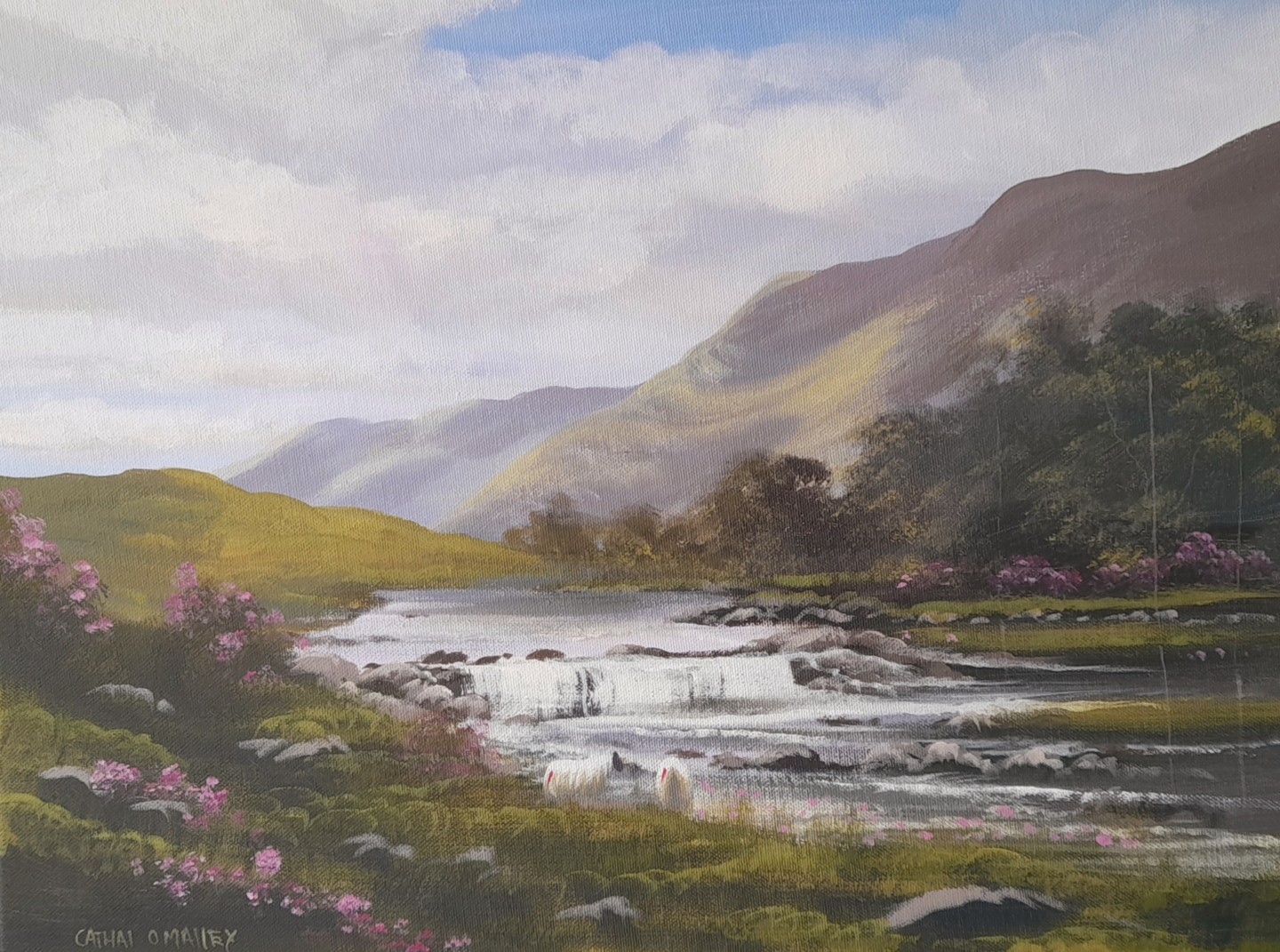 Cathal O Malley - Aasleagh falls,june