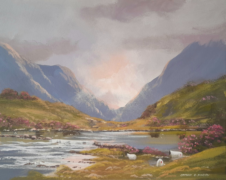 Cathal O Malley - Connemara evening light