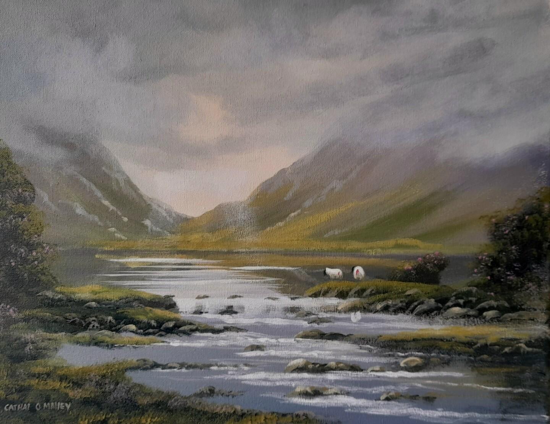 Cathal O Malley - Maam sheep connemara