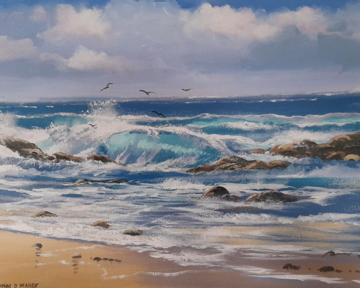 Cathal O Malley - Omey  summer waves