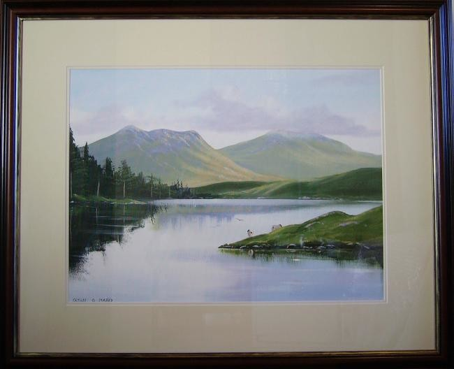 Cathal O Malley - ballinahinch lake scene