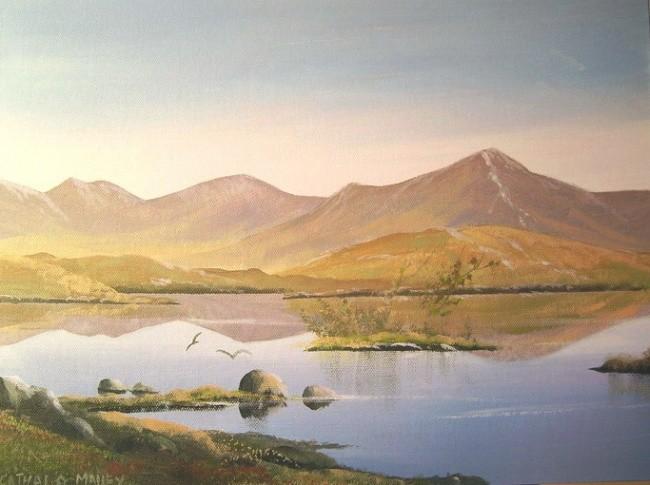 Cathal O Malley - recess lake birds