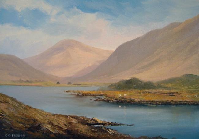 Cathal O Malley - lakeside sheep