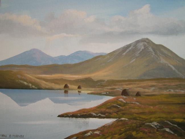 Cathal O Malley - sunlit bogland
