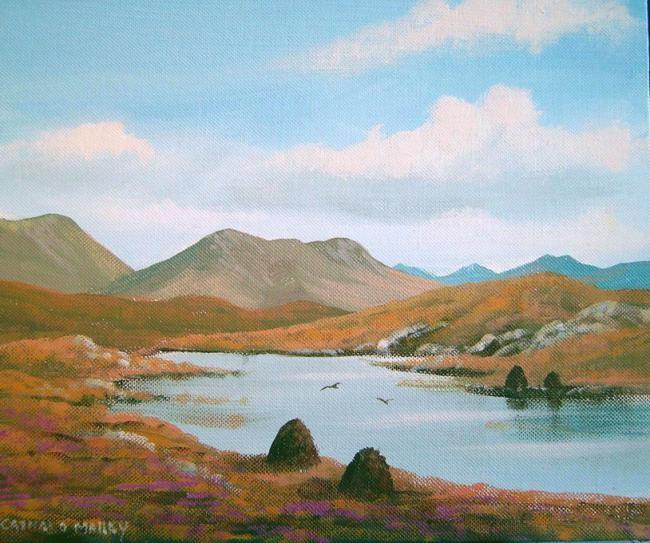 Cathal O Malley - roundstone bogland