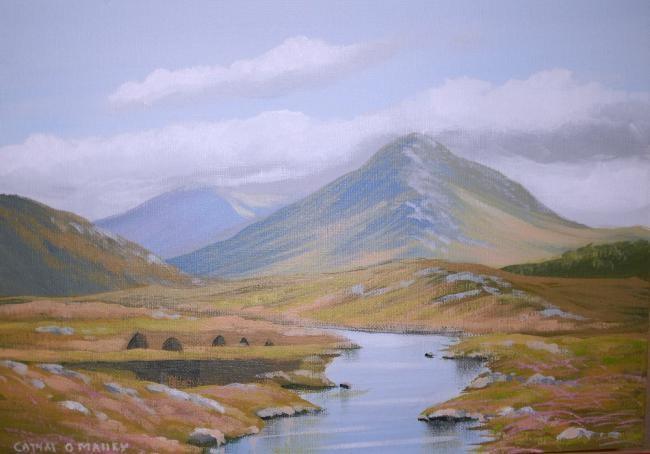 Cathal O Malley - connemara recess bogland