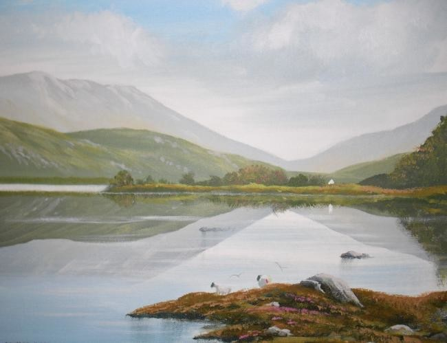 Cathal O Malley - kylemore lakeside sheep