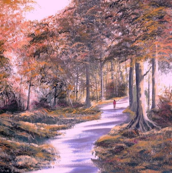 Cathal O Malley - drumboe woods