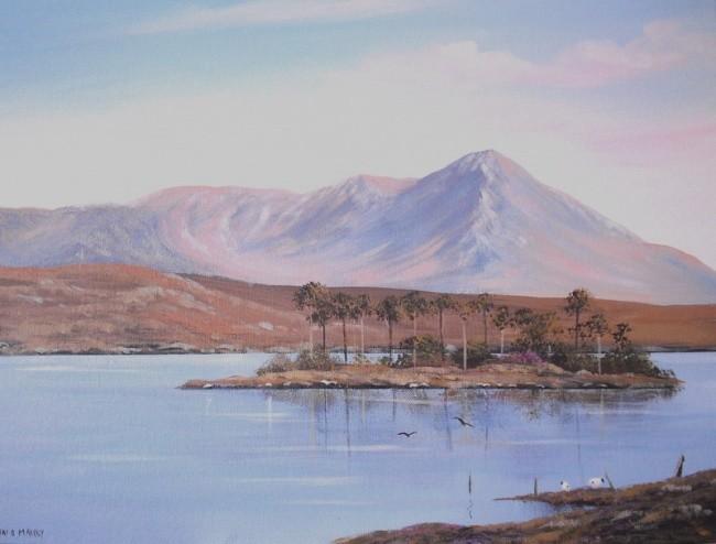 Cathal O Malley - pine island spring