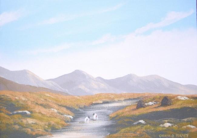 Cathal O Malley - maam bogland
