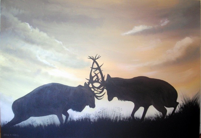 Cathal O Malley - the stag fight