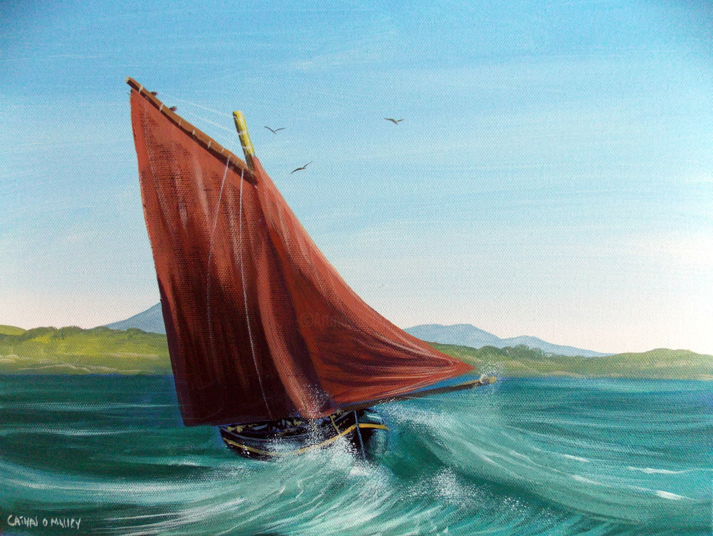 Cathal O Malley - the wave