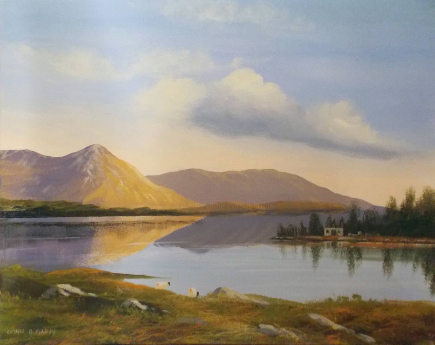 Cathal O Malley - inagh  valley boathouse