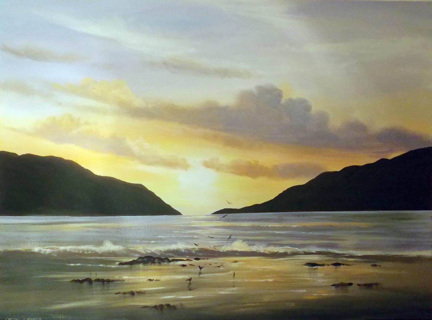 Cathal O Malley - sunset  birds  the killary