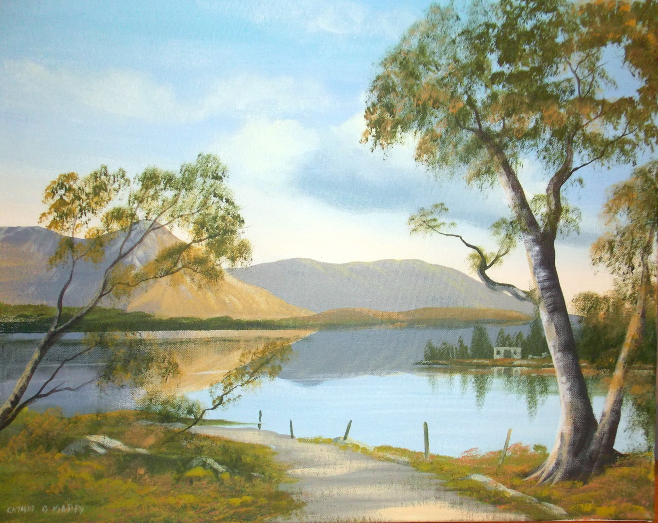 Cathal O Malley - inagh valley  lake scene