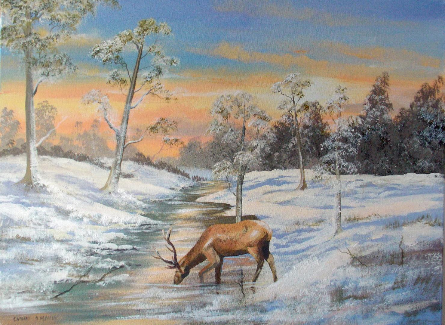 Cathal O Malley - november snow