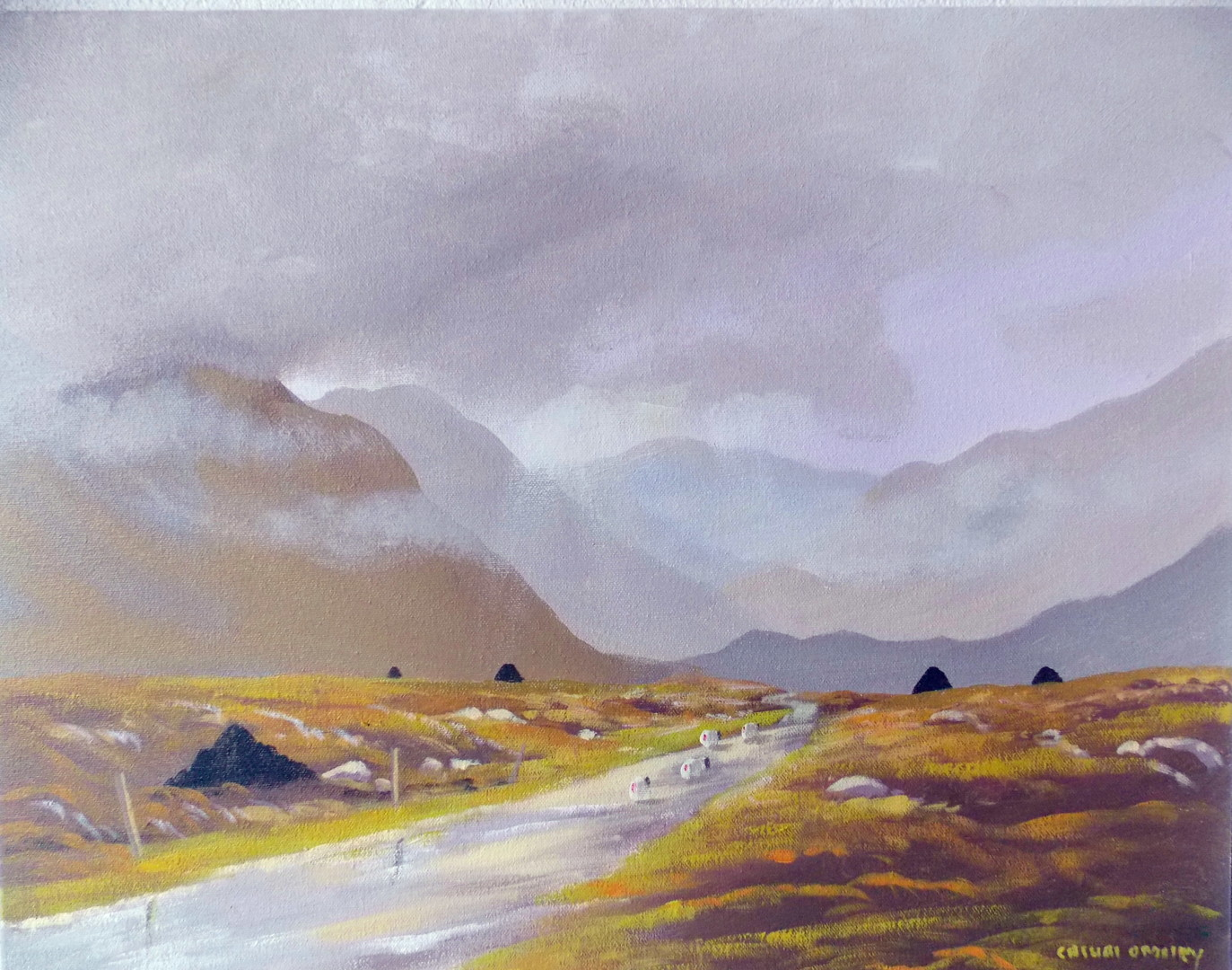 Cathal O Malley - connemara  light