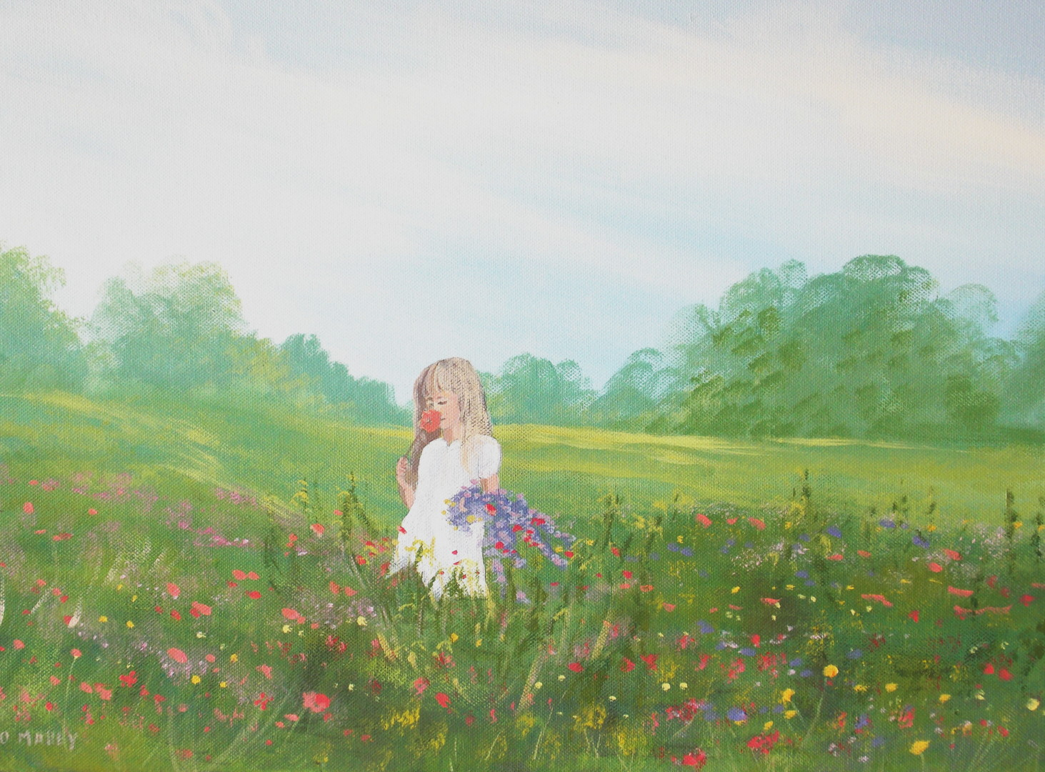 Cathal O Malley - meadow flowers