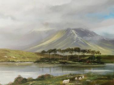 Derrylea lake connemara