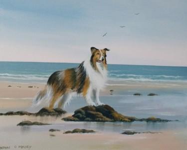 lassie-beach-days.jpg