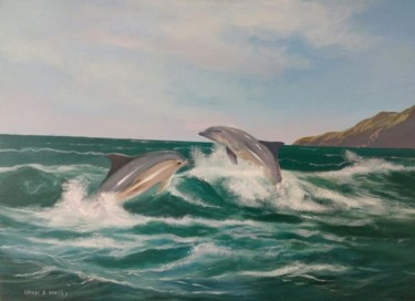 The dolphins in dingle