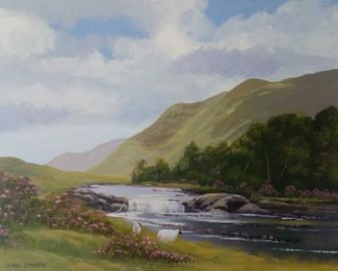 aasleagh falls,co mayo 2020