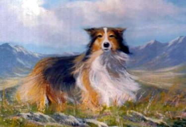 lassie and landscape